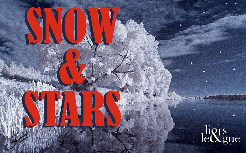 Snow_stars copy2